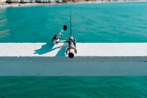 Amelia Island has many bait and tackle shops. You are never without the right tools to tackle one of the finest age-old activities in Florida- fishing.